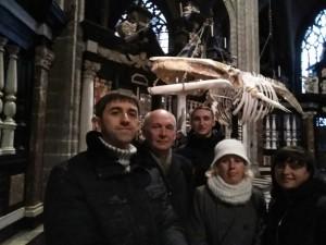 Бельгія м. Гент Saint bavos cathedral